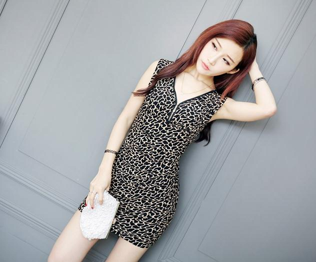 Free Shipping Sexy V-Neck Mini Dress - Leopard