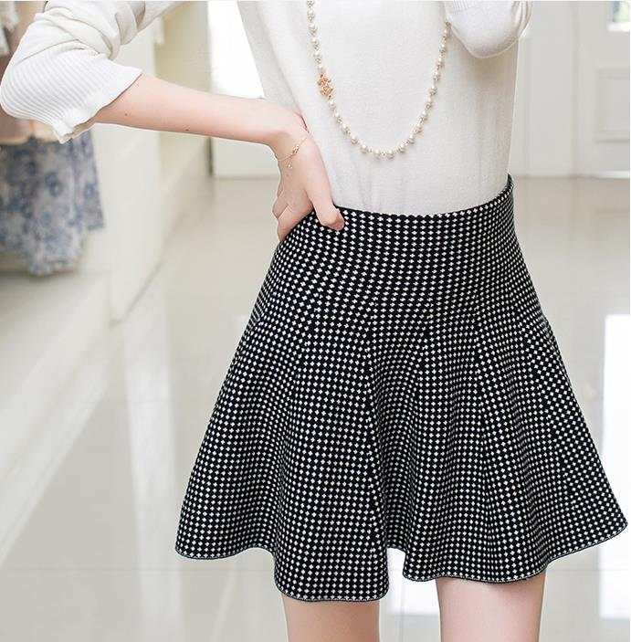 New Autumn And Winter Nice OL Women's Skirt